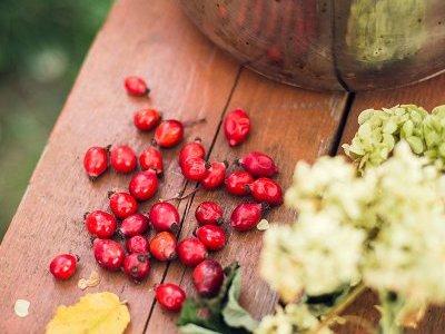 4 Manfaat Rosehip Oil Untuk Kecantikan Kulit