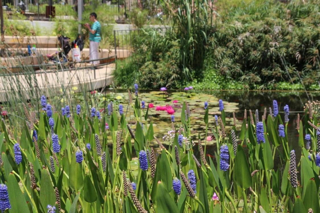 Парк Кирьят Сефер в Тель-Авиве