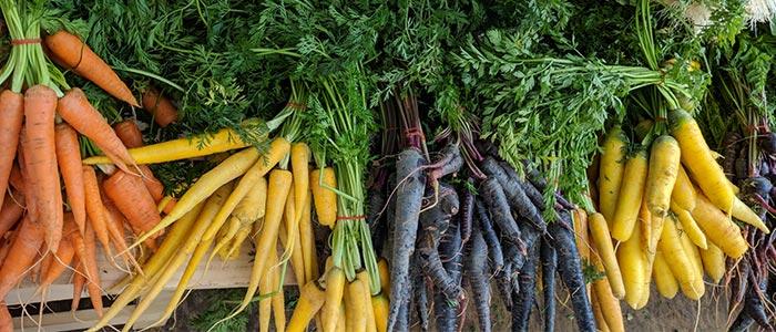 Dubai Farmer's market