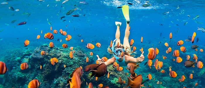 Snorkelling adventure
