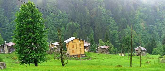 ayder valley