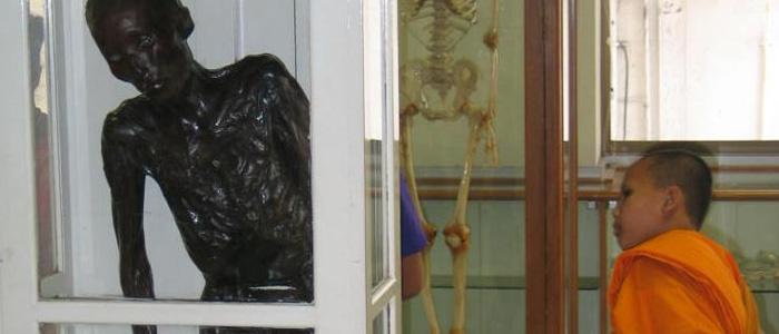 museum of death forensic museum bangkok