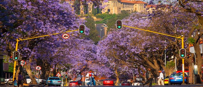 South Africa Staycations - Pretoria