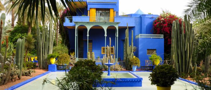 Things To Do In Marrakech - Jardin Majorelle