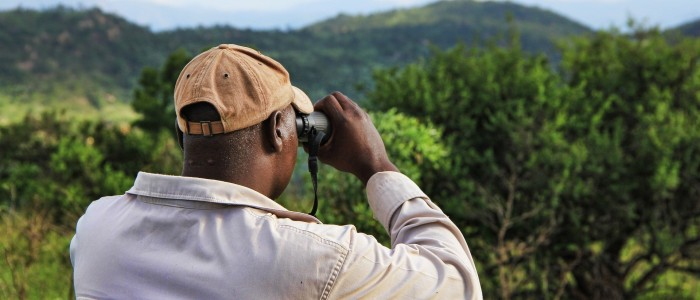 Guide to Africa Safari Trips - trust guide on african safari