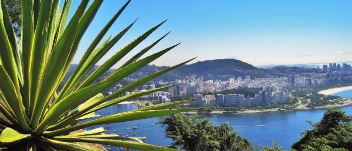 Flamengo Park brazil