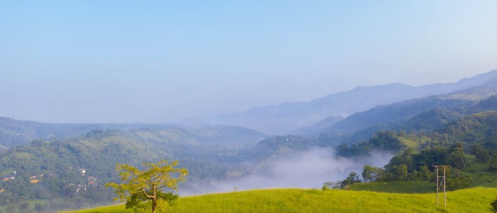 Things to do in India - Himachal Pradesh meadows