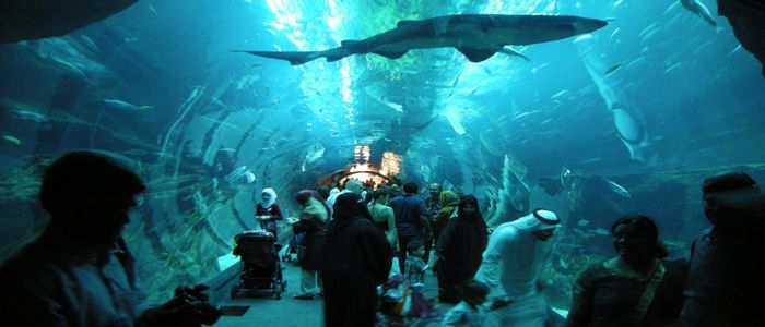 Mind-Blowing & Some Hidden Hangouts In Dubai - World's Largest Aquarium