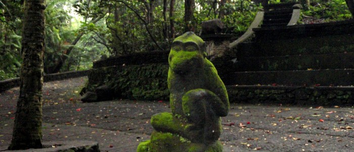 things to do in Indonesia - Sacred Monkey Forest