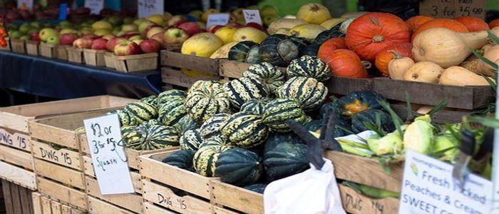 things to do in Czech Republic - Farmers Market