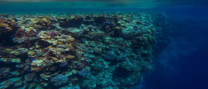 Top Things To Do In North Africa - Blue Hole