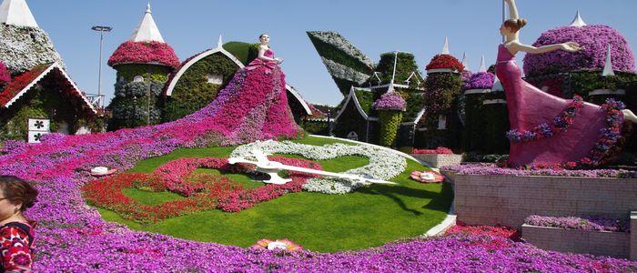 Celebrate Valentine's Day In Dubai - Miracle Garden