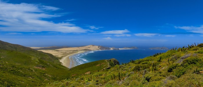 Things To Do In New Zealand - Bay of Islands New Zealand