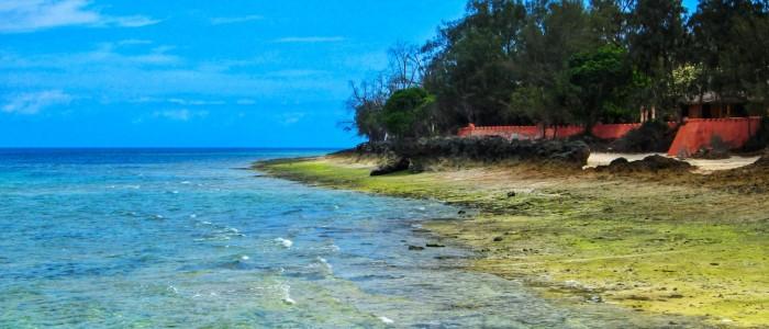Changu Island Tanzania