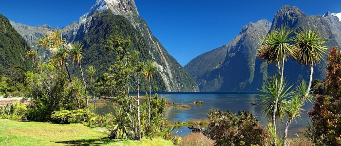 Things To Do In New Zealand - Milford sound New Zealand