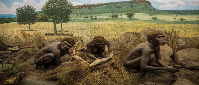 Things To Do In Kenya - Visit Nairobi National Museum