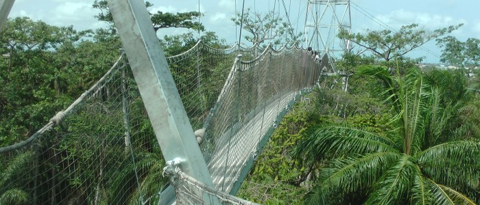 Lekki Conservation Center Lagos Nigeria