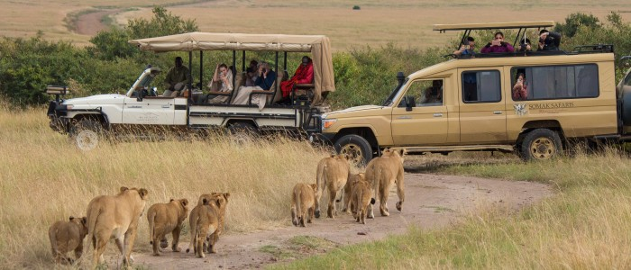 Maasai Mara Reserve Kenya