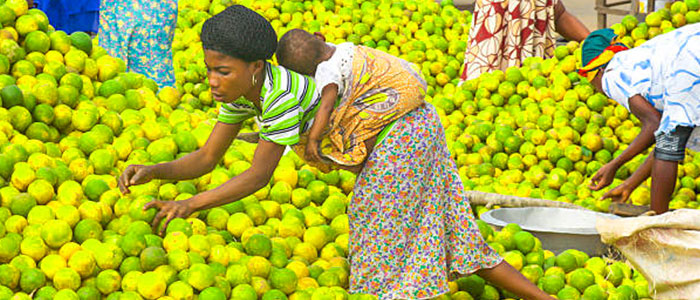 Salaga Market
