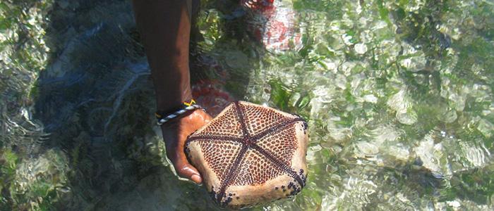 Watamu Marine National Reserve