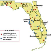 Présentation des vins de Floride #USA #Floride #vin