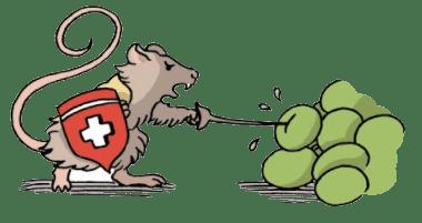 Illustration du journal du sommelier sur le vignoble suisse souris raisin