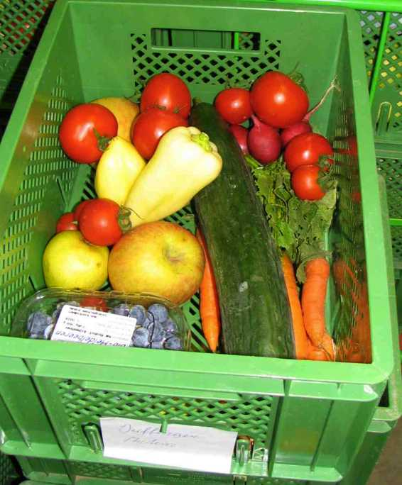 veg-food-basket