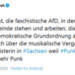 gruene-punk-1