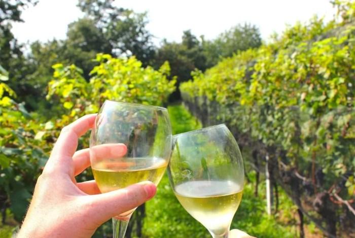 wine-tasting-lugano
