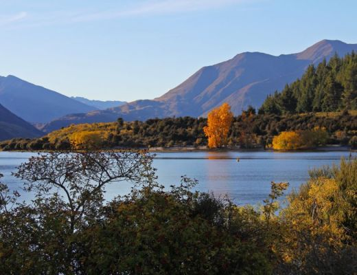 summer in lake wanaka
