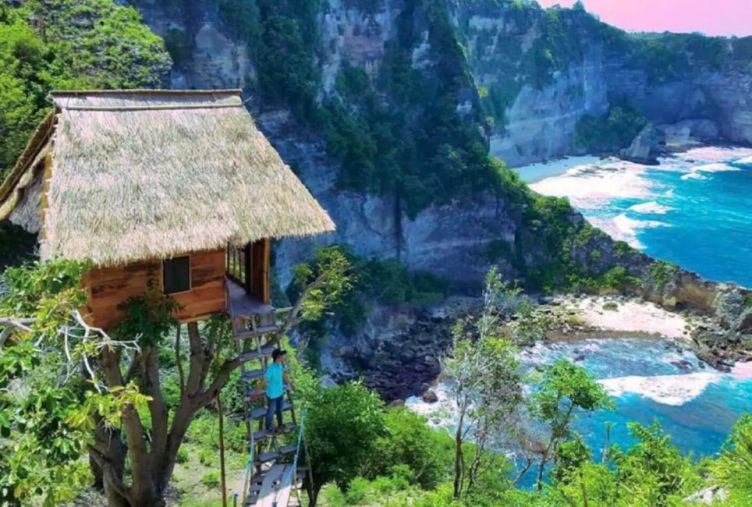 nusa penida treehouse accommodation