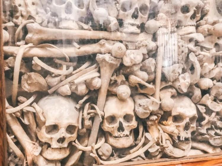 otranto cathedral skulls