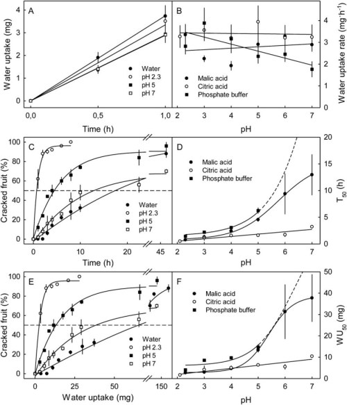 small resolution of effect of ph of malic acid citric acid and phosphate buffer on cracking of adriana sweet cherry fruit a time course of water uptake from malic acid