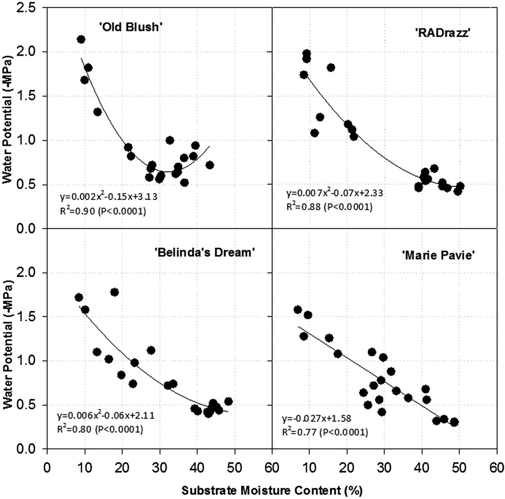 hight resolution of relationship between midday leaf water potential and the substrate moisture content smc for four rose rosa hybrid l cultivars old blush radrazz