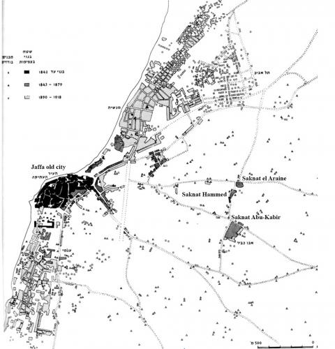 Plantation: Modern-Vernacular Housing and Settlement in