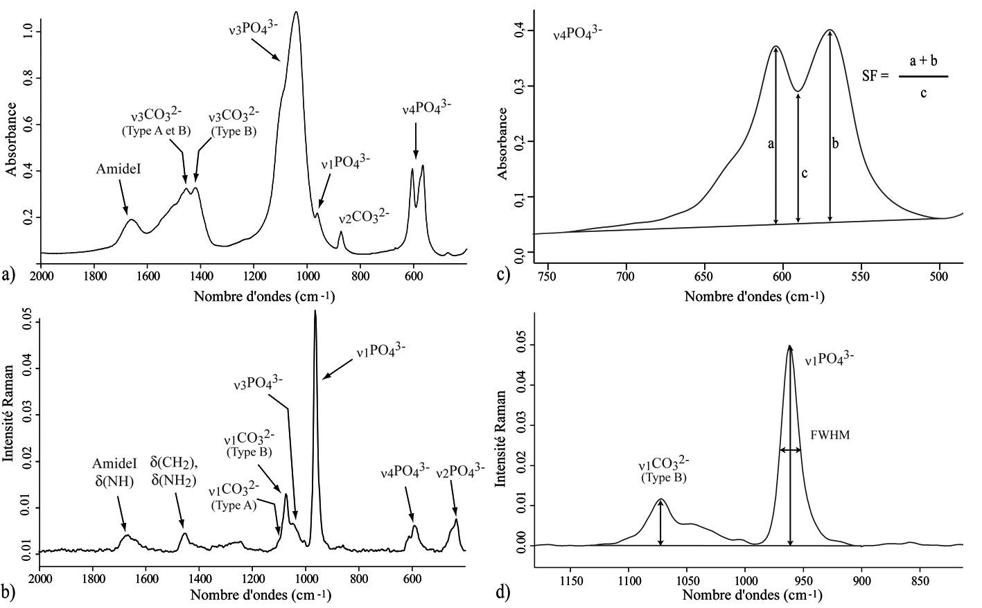 Application des micro-spectrométries infrarouge et Raman à