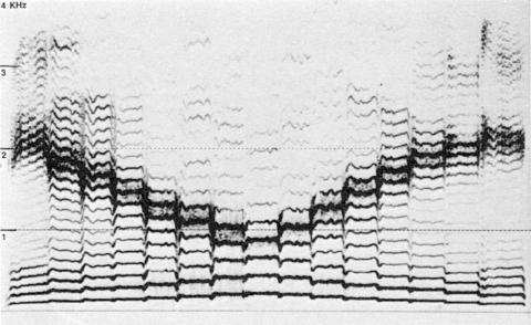 Fig. 48: Expérimentation d'un mouvement contraire entre bourdon et mélodie d'harmoniques, par Trân Quang Hai.