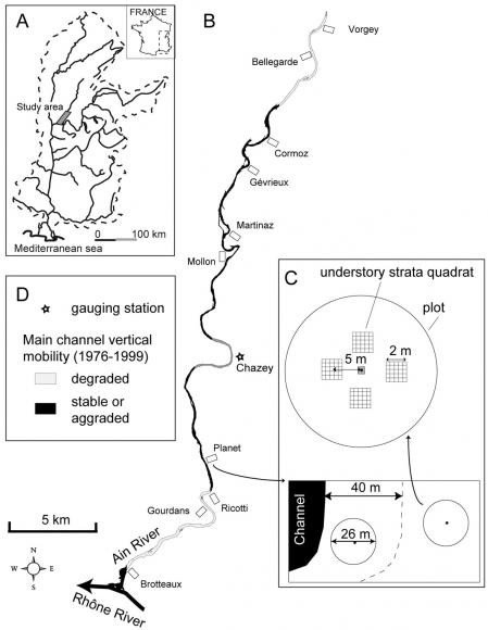 Channel vertical mobility, hydro-geomorphic disturbances