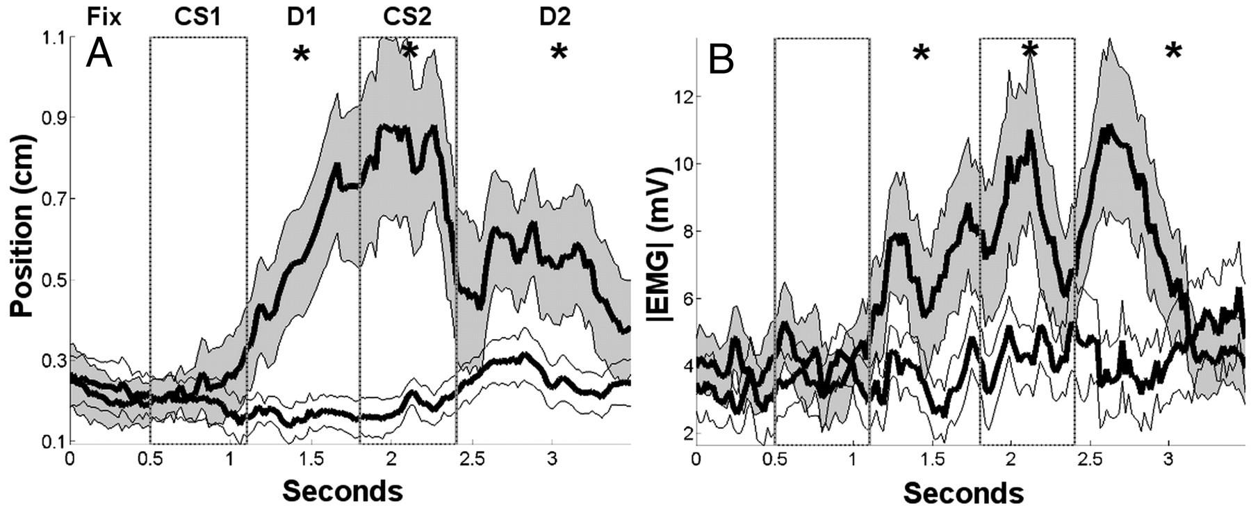Selective Delay Activity in the Medial Prefrontal Cortex