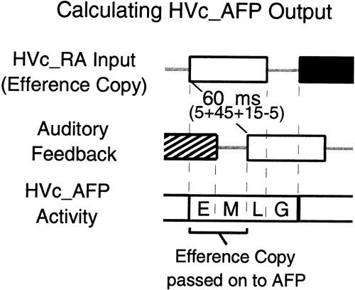 An Associational Model of Birdsong Sensorimotor Learning I