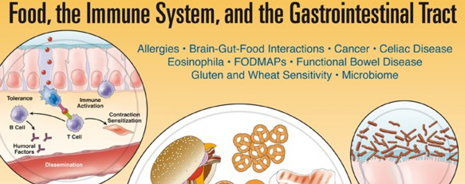 Special Issue: Food, the Immune System, and the GI Tract