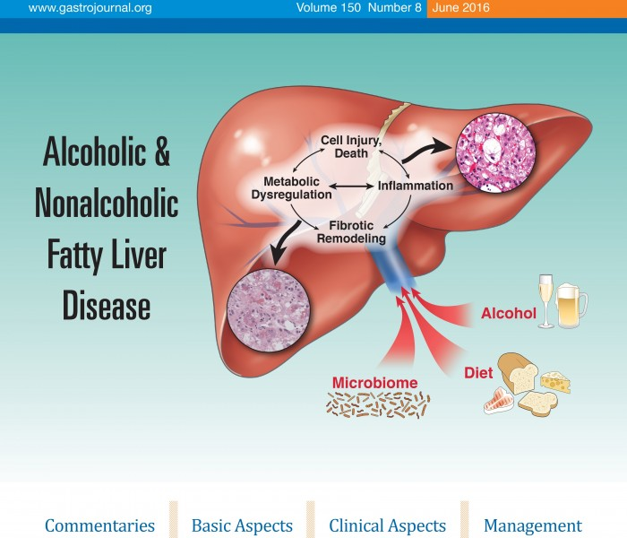 Gastroenterology Special Isssue on Alcoholic vs Non-Alcoholic Fatty Liver Disease