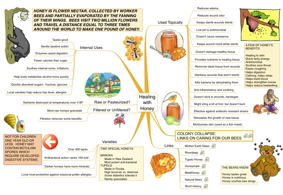 A Mind Map about the Healing Properties of Honey