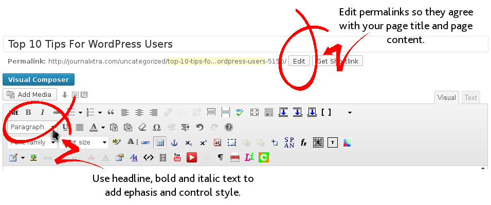 Using the WordPress Visual Editor