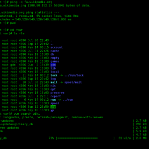Navigate Linux by the Command Line