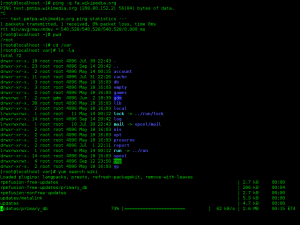 Linux command line screenshot