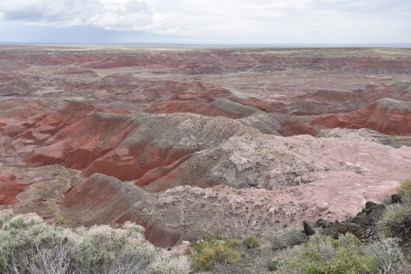 Painted-Desert-to-Blog Petrified Forest National Park: 250 Million Years In the Making