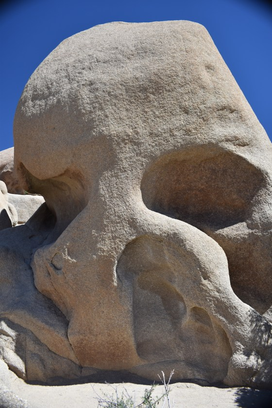 Skull-Rock-682x1024 Joshua Tree National Park: Rock Piles and Joshua Trees
