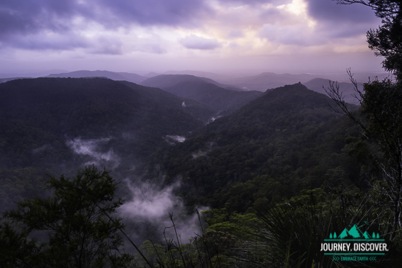 Tallebudgera Valley, Springbrook National Park