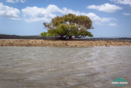 Tidal Island off Norman Point in Tin Can Bay, east of Gympie.